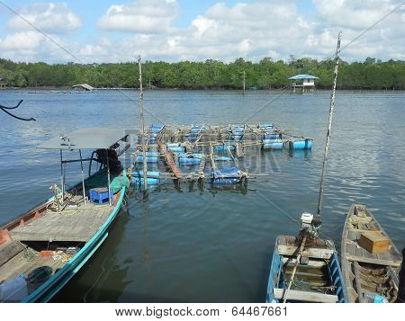 Cage aquaculture farming
