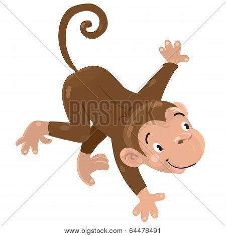 Little funny monkey