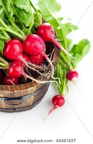 Vegetables fresh radish in wooden bucket. Isolated on white background