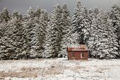 picture of shacks  - shack and snow - JPG