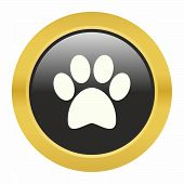 image of paw  - Dog paw icon as a symbol of dog paw - JPG