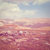 pic of samaria  - Sand Hills of Samaria in Israel Photo Filter - JPG