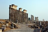 stock photo of cardo  - Pompey made Apamea  - JPG