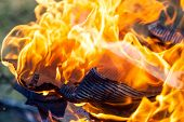 stock photo of ember  - burning fire and embers in shades of red as a danger