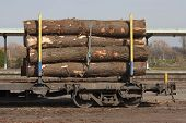 stock photo of railcar  - A rail car loaded with logs parked at station - JPG
