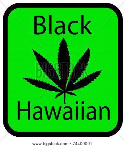 Black Hawaiian marijuana