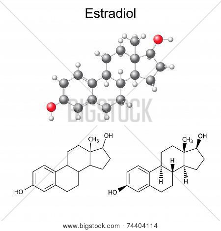 Structural Chemical Formulas And Model Of Estradiol Molecule