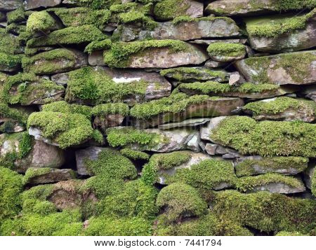 Dry stone wall with moss