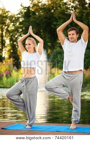 Yoga couple doing tree pose