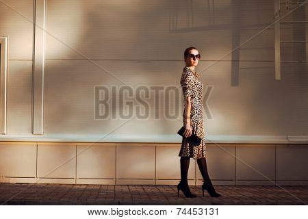 Street Fashion, Pretty Elegant Woman Model In Leopard Dress And Sunglasses Posing In Urban Style Out