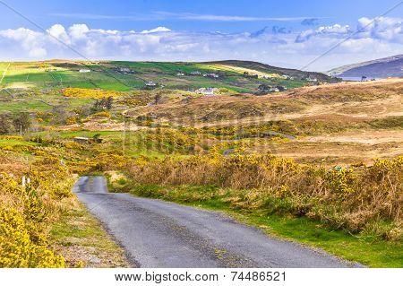 Land Road Leading To Garraunbaun Lough