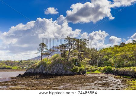 Rocky Island With Trees