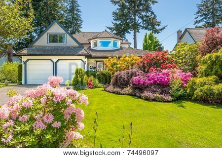 Flowers in front of the house, front yard. Landscape design.