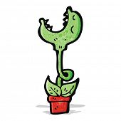 stock photo of carnivorous plants  - cartoon carnivorous plant - JPG