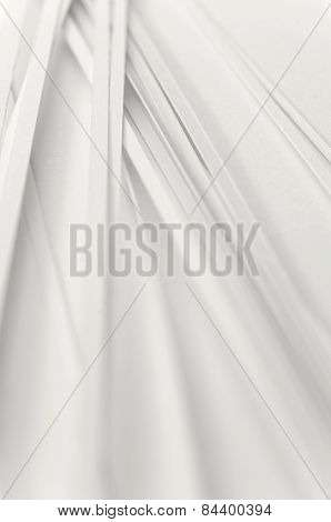 White Stripes Background