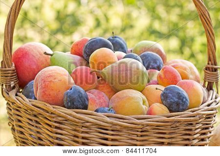 Fresh organic fruits (seasonal fruit)