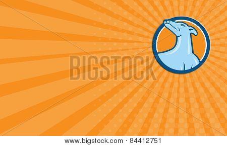 Business Card Greyhound Dog Head Looking Up Cartoon