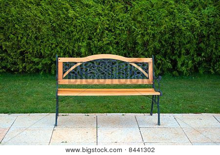 Nice Bench In Front Of Green Grass And Bushes