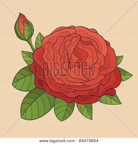 Decorative Isolated Rose With Bud