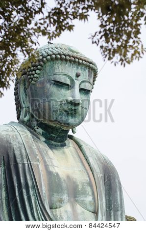 The Great Buddha (daibutsu) In Kamakura , Japan