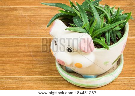 Little Cute Ceramic Pig Hold Small Plant On Back