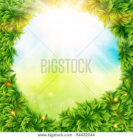 Green leaves surrounding spring sunshine