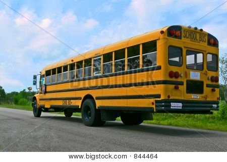 school bus whole