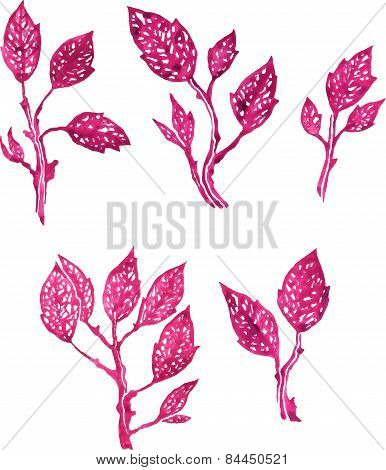 set of isolated objects of pink leaves