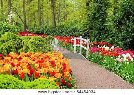 Walkway through spring flowers