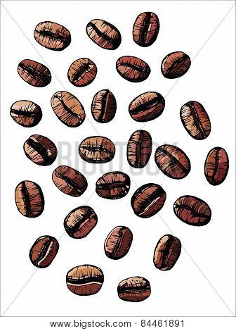 Roasted Coffee Beans, Vector Illustration