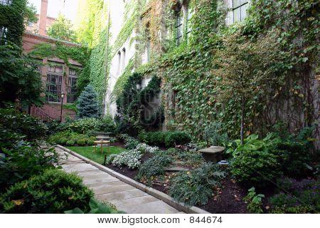 Lush Boston Garden