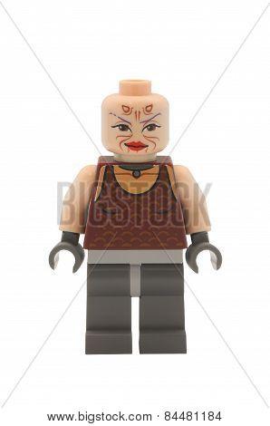 Sugi Lego Minifigure