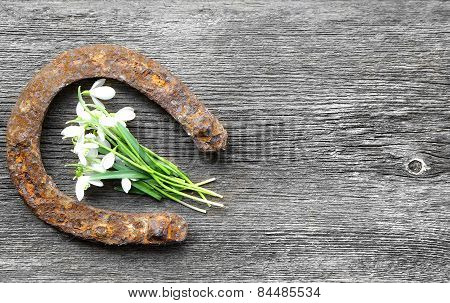 Vintage Horseshoe With Lily Of The Valley