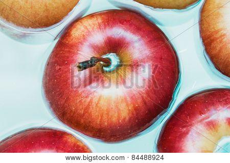 Juicy Big Red Apple In Blue Water