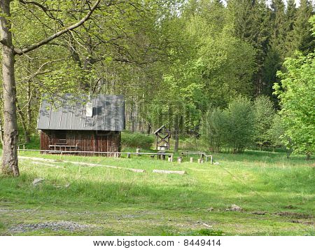wooden cabin in the forest