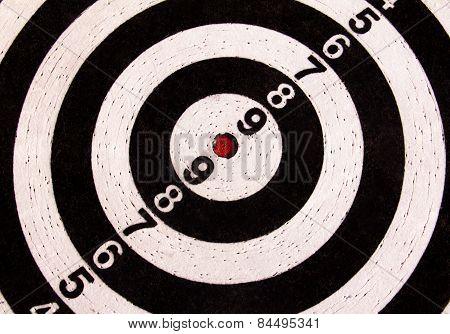Black and white darts target