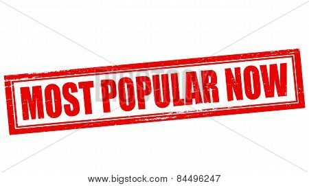 Most Popular Now