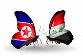 foto of iraq  - Two butterflies with flags on wings as symbol of relations North Korea and Iraq - JPG