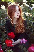 stock photo of auburn  - Young caucasian woman with auburn hair sitting in the rose garden in the sunset light - JPG