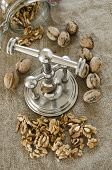 picture of nutcracker  - nutcracker and pile of walnuts in shell in soft diffused light - JPG