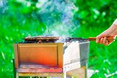 stock photo of brazier  - delicious meat cooked on the brazier outdoors - JPG