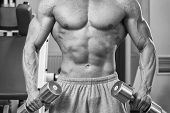 image of strength  - The strong man at the gym doing exercises with heavy weights - JPG