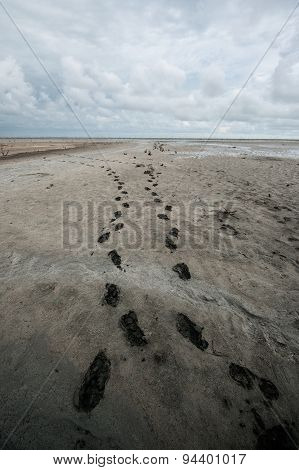 Footprints in the moodsand and cloudy sky