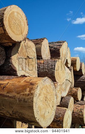 Stack of timber on blue sky background