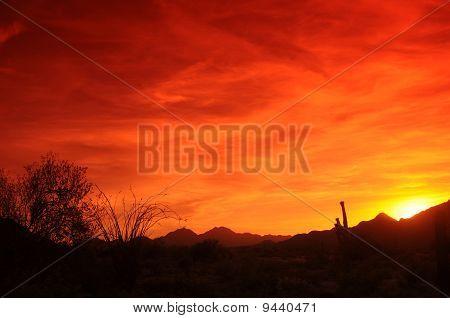 Sunset sudoeste