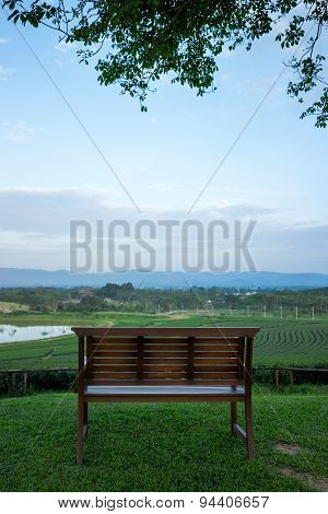 Bench on green field, Viewpoint