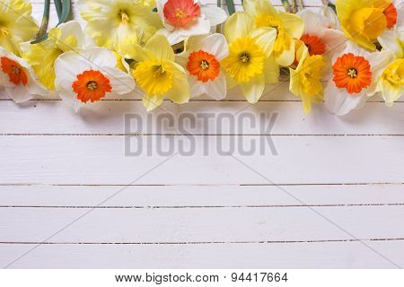 Border From Colorful Flowers