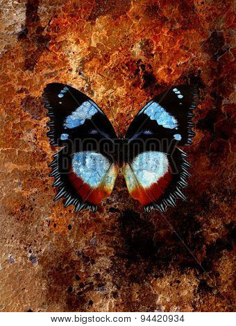 Abstract Background With Rust Structure And Butterfly.