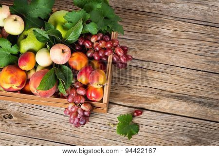 A Crate Of Fresh Fruits, View From Above