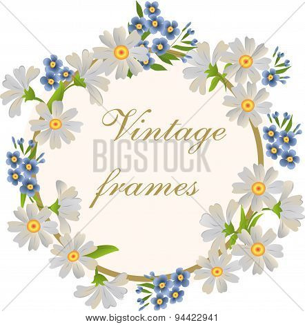 Vector Frame With Daisies And Forget-me-nots.